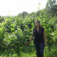 Margaret Ruggiero with chardonnay vines