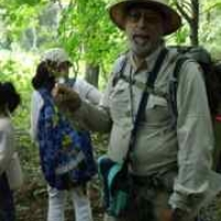 Wildman talks about garlic mustard